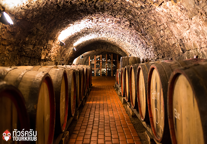 Old wooden barrels with wine in a wine vault, aged traditional wooden vine barrels lined up in cool and dark vine cellar, Porto, Portugal