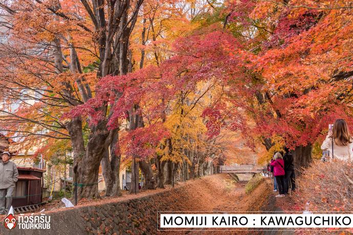 Tokyo Autumn 2016